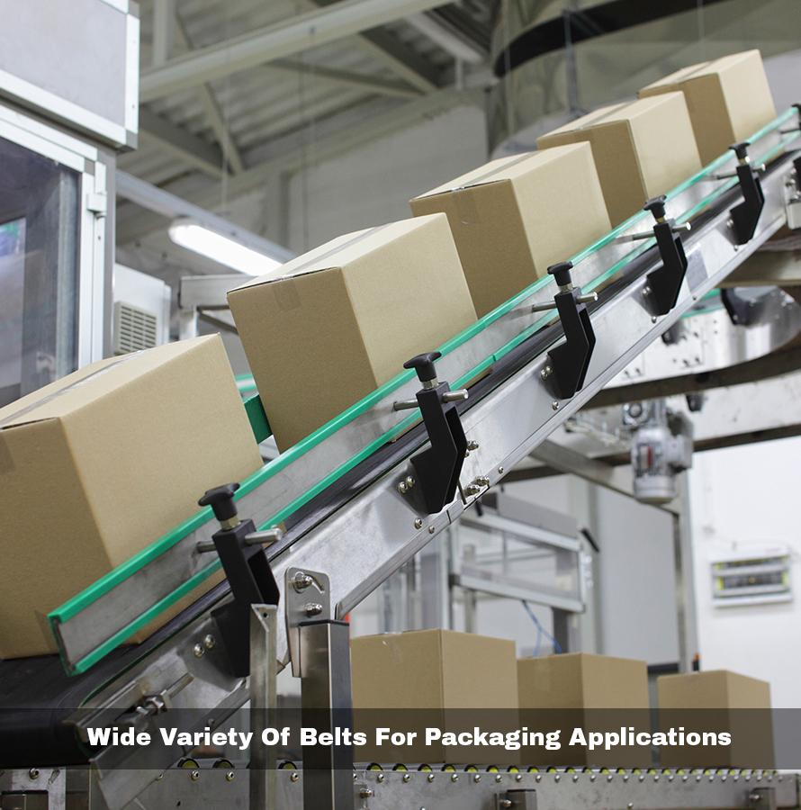 wide variety of conveyor belt in mumbai for packaging application